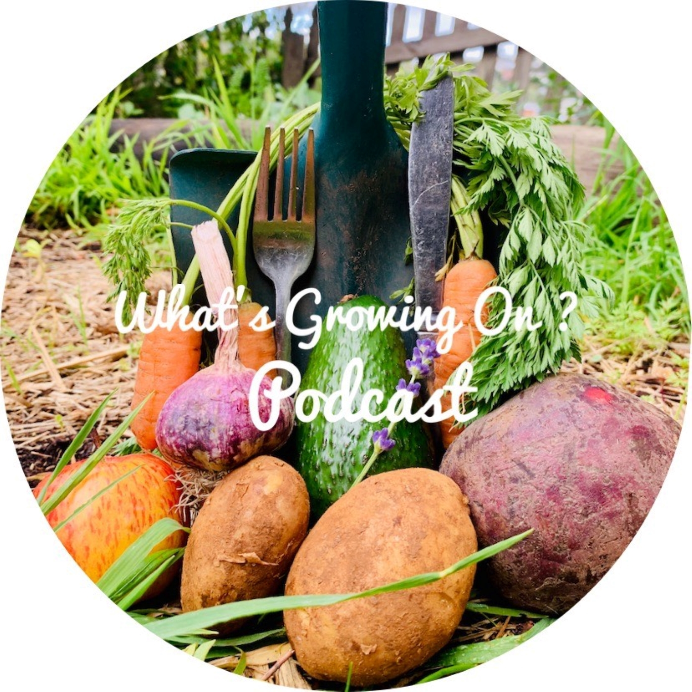 Permaculture; Creating Sustainable Communities