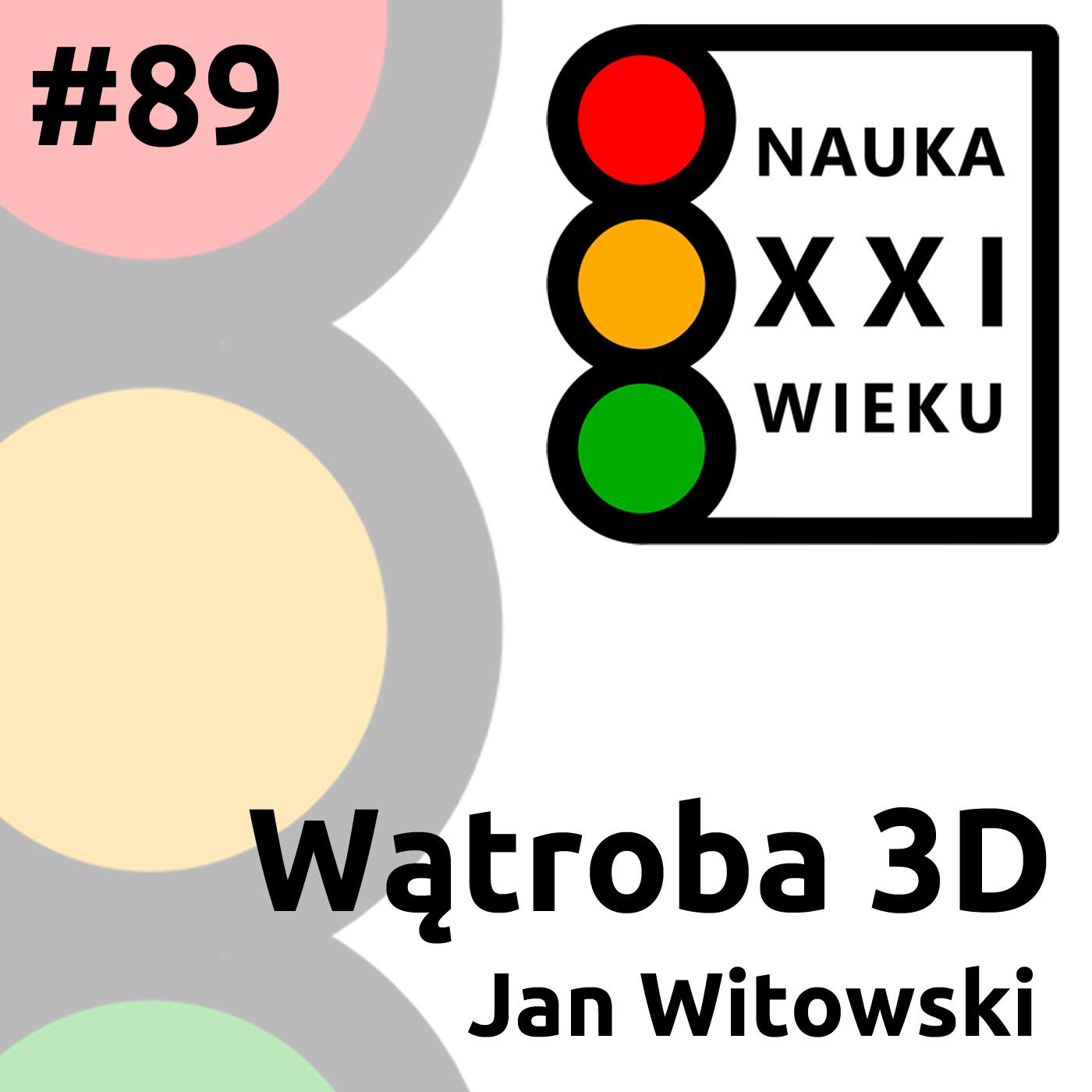 #89 - Wątroba 3D